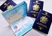 圣基茨护照成功案例:拿王牌护照全