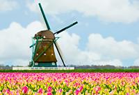荷兰购房移民的政策有哪些优势呢?