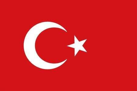 土耳其移民移民