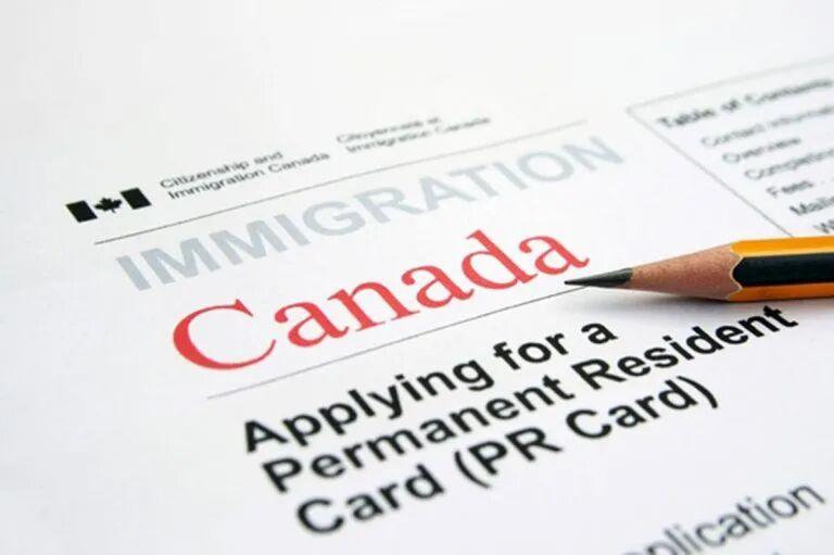 加拿大移民签证数量下降26%,预计下半年将恢复正常增长!