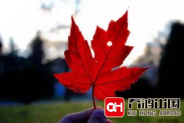 准备移民加拿大需要办理哪些文件资料证明